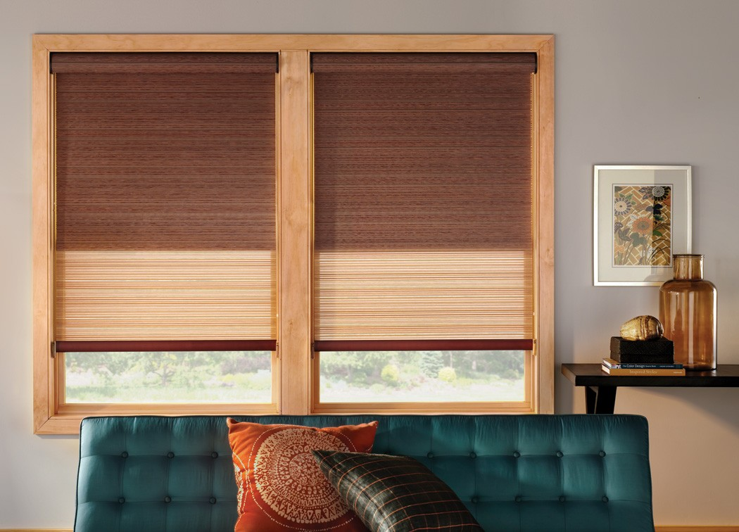 Dual Roller Shades Sheer Fabric Blackout Fabric