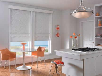 Dual Roller Shades - Modern Day Decor Style