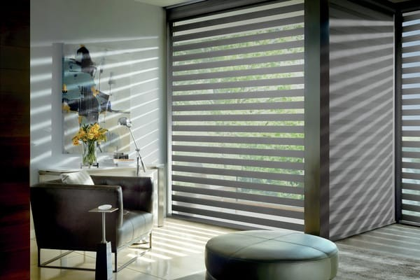 Zebra Blind Sitting Area — Enjoy filtered light into your room. Roll the shade to get relief from sun heat and glare