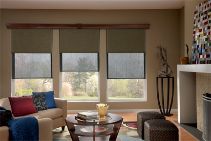 Screen Shades for windows – Dual Screen Shades offer both view through and privacy