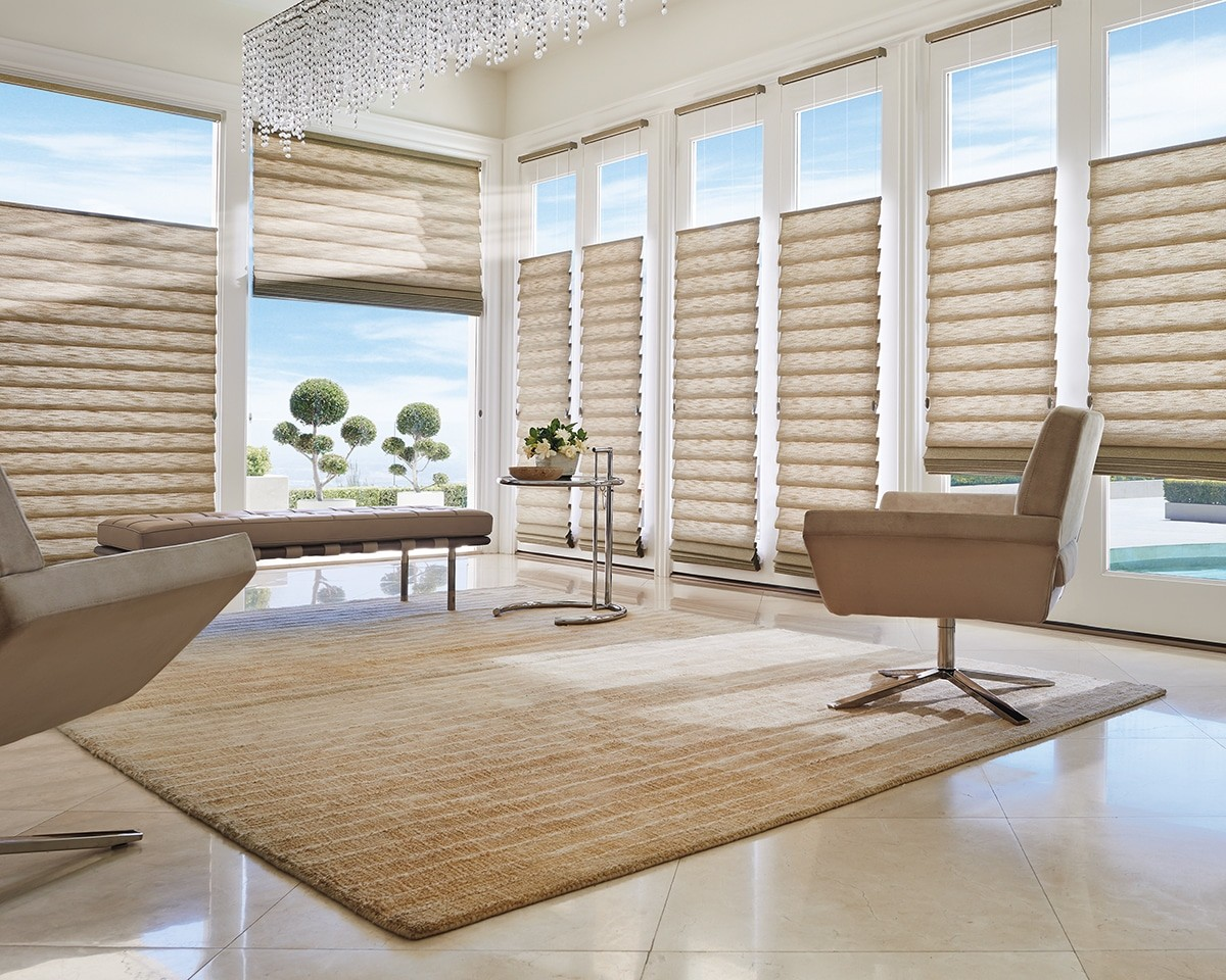 Modern Roman Shades in the Living Room