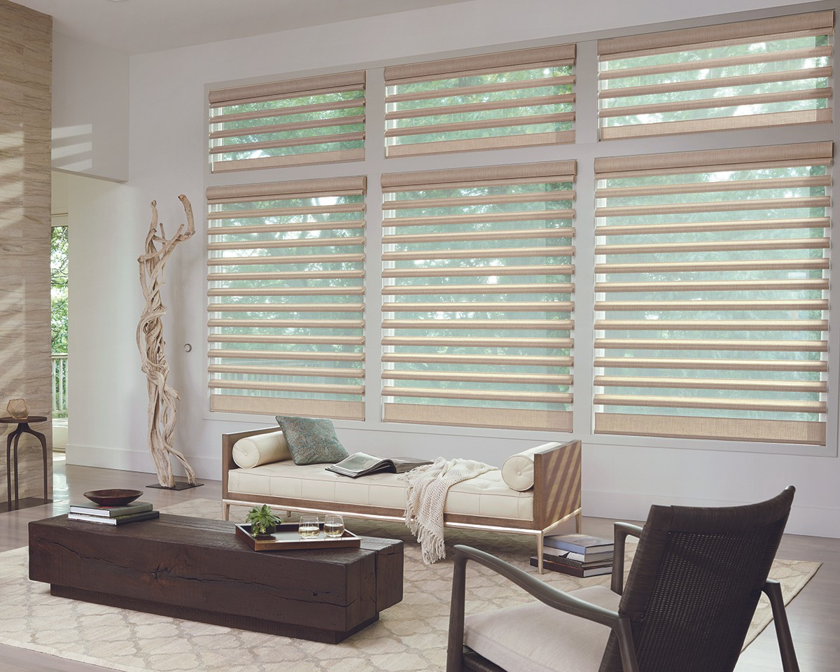 Pirouette shades for living room windows